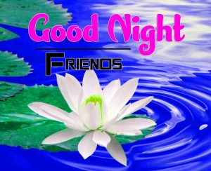 New Good Night Images For Friends Wallpaper Download