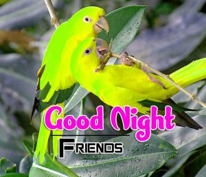 New Good Night Images For Friends Wallpaper Free