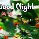 Good Night Images Pics HD Download Free