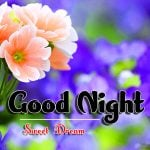 658+ Good Night Images For Whatsapp Free Download [ Best Collection ]