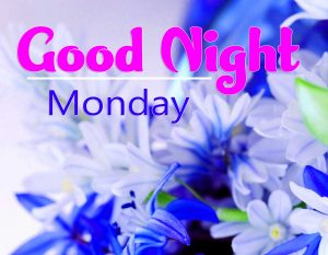 New Top Beautiful good night monday images Pics Download