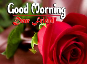 Nice Good Morning For Facebook Images Download