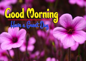 Nice Good Morning For Facebook Photo Pics