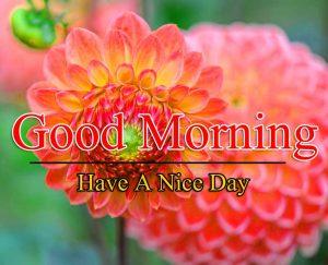 Nice Good Morning Free Hd Images Download