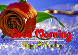 Nice Good Morning Wednesday Hd Free Download