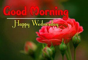 Nice Good Morning Wednesday Photo PIcs Free