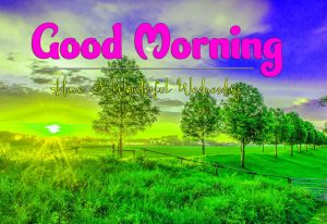Nice Good Morning Wednesday Pics