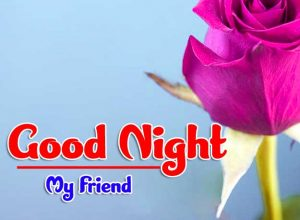 Red Rose free good night monday images Pics Download Free