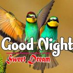 Romantic Good Night Images pictures free hd