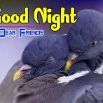 Romantic Good Night Images For Lover pics hd download