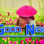 Romantic Good Night Wishes Pics Download