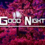 Romantic Good Night Wishes Pics Wallpaper Free