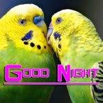 Free Romantic Good Night Wishes Wallpaper In HD