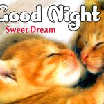 Romantic Good Night Sweet Dreams Images pictures free hd