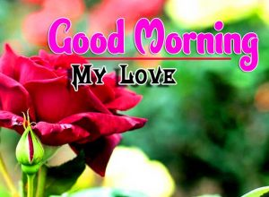 Spcieal Good Morning Download Free