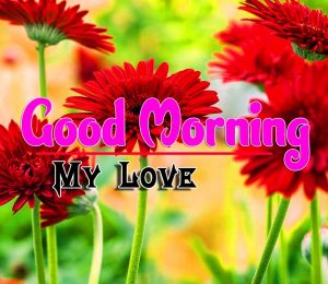 Spcieal Good Morning Download Photo