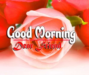 Spcieal Good Morning Free Photo