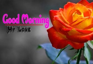 Spcieal Good Morning Images Free