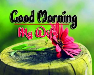 Spcieal Good Morning Images Hd