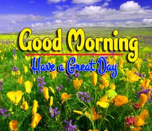 Spcieal Good Morning Photo Download