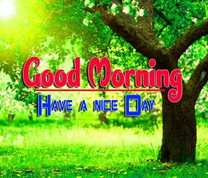 Spcieal Good Morning Pics Images