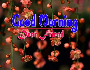 Spcieal Good Morning Pictures Images