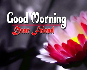 Spcieal Good Morning Pictures Photo