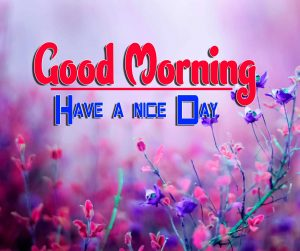 Spcieal Good Morning Pictures Pics