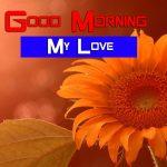 Sunflower Good Morning Pics Free