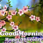 Thursday Good Morning Images pictures free hd