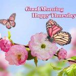 Thursday Good Morning Images wallpaper hd