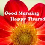 Thursday Good Morning Images wallpaper downnload