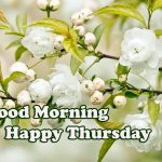Thursday Good Morning Images pictures free download