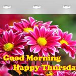Thursday Good Morning Images pictures hd download