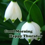 Thursday Good Morning Images photo download