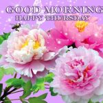 Thursday Good Morning Images photo for hd