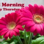 Thursday Good Morning Images pictures hd
