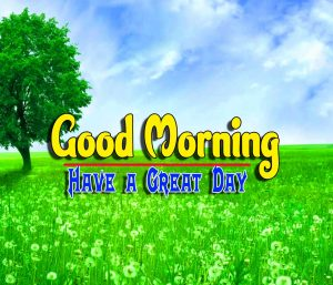 Top Good Morning For Facebook Images