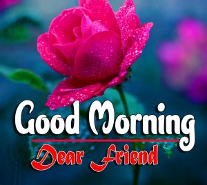 Top Good Morning For Facebook Photo Wallpaper Download