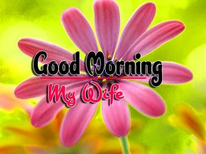 Top Good Morning For Facebook Pictures Free Download