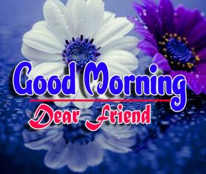 Top Good Morning For Whatsapp Wallpaper Download