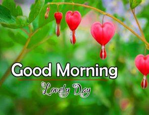 Top Good Morning Hd Free Download Pics