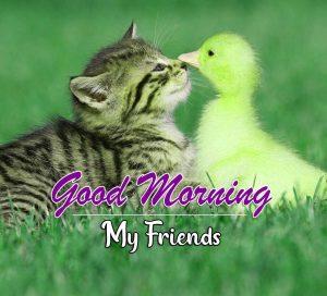 Top Good Morning Photo