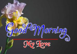 Top Good Morning Pictures