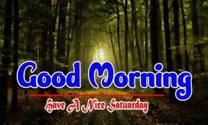 Top Good Morning Saturday Images Hd