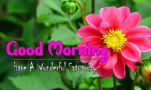 Top Good Morning Saturday Images Photo