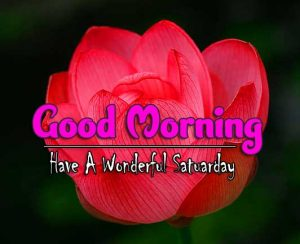 Top Good Morning Saturday Pictures Hd