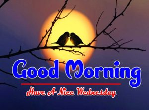 Top Good Morning Wednesday