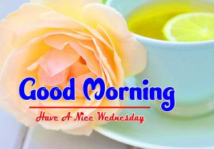 Top Good Morning Wednesday Pics