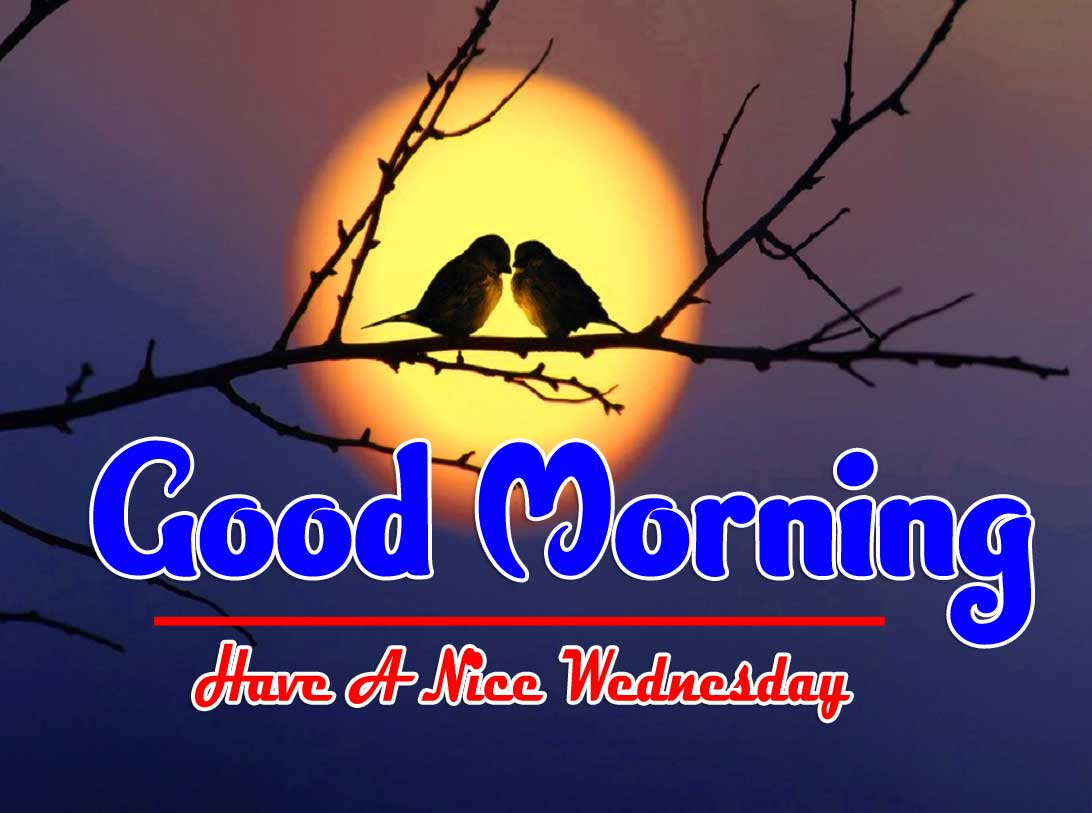 1652+ Good Morning Wednesday Images For Whatsapp Free Download